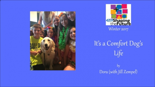 It's a Comfort Dog's Life